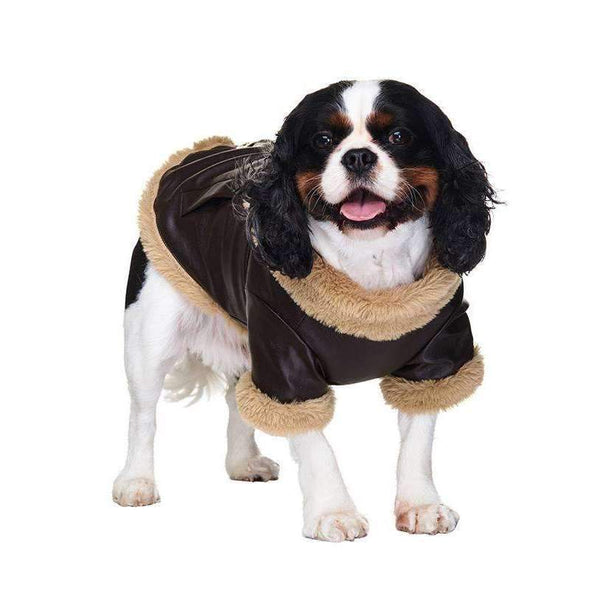 Urban Pup Brown Leather Flying Jacket Dog Coat Small - Posh Pawz Fashion