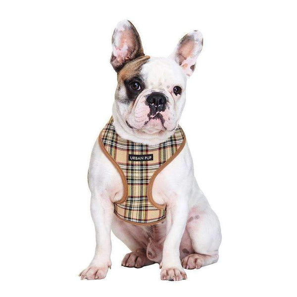 Brown Tartan Designer Dog Harness - Posh Pawz Fashion