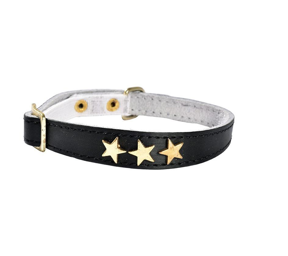 Gold Stars Leather Cat Safety Collar In Black - Posh Pawz Fashion