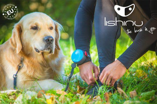 Lishinu Hands Free Retractable Bungee Dog Leads - Posh Pawz Fashion