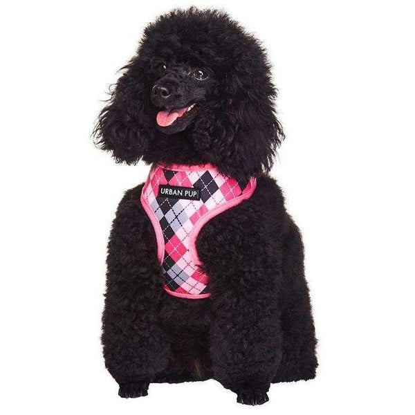 Pink Argyle Dog Harness2 - Posh Pawz Fashion