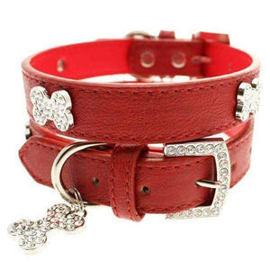 Red Leather Diamante Dog Collar And Bone Charm - Posh Pawz Fashion