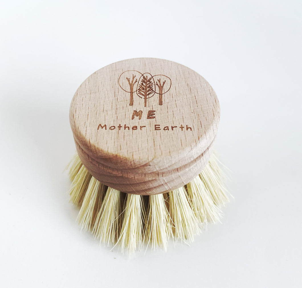 Sustainables: Sisal Kitchen Brush- Replacement Head ONLY.