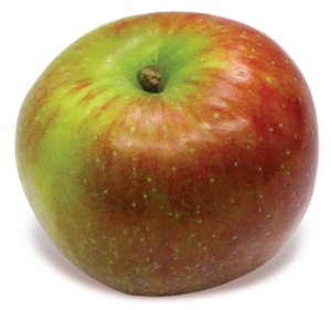 Baldwin Apple