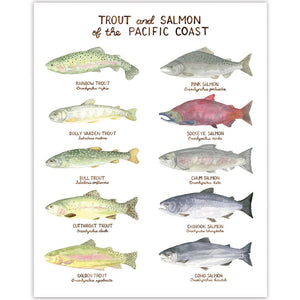PNW Trout and Salmon Art Print