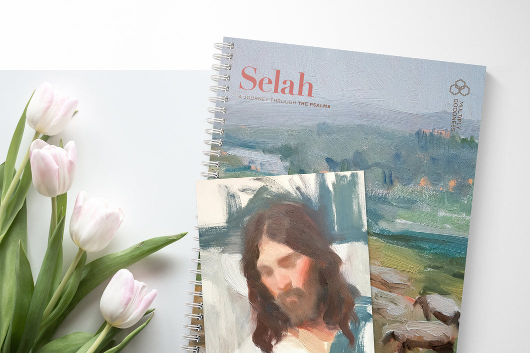 SELAH: A Journey Through the Psalms (PRINTED GUIDE)