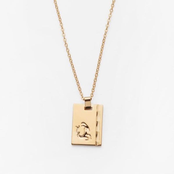 Star Sign Necklace Capricorn