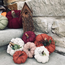 Load image into Gallery viewer, Mini Pumpkins