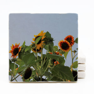 Sunflower Marble Drink Coaster