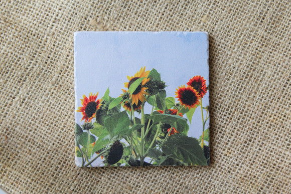 sunflower drink coasters