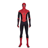 Peter Parker black and red costume