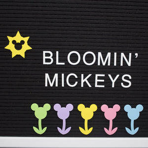 Bloomin' Flower Letter Board Mediums