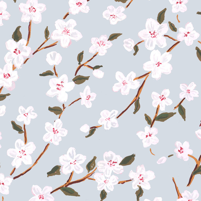 Blue Cherry Blossoms Gift Wrap