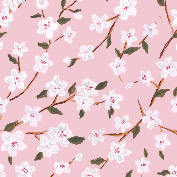 pink cherry blossoms gift wrap