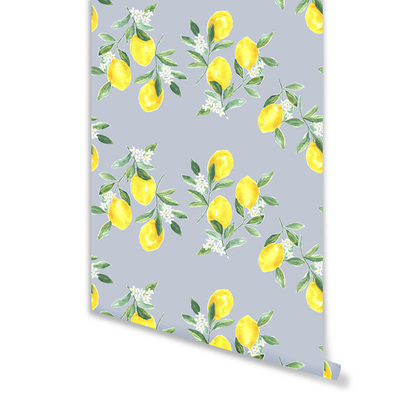 Fresh Squeezed Wallpaper in Light Blue