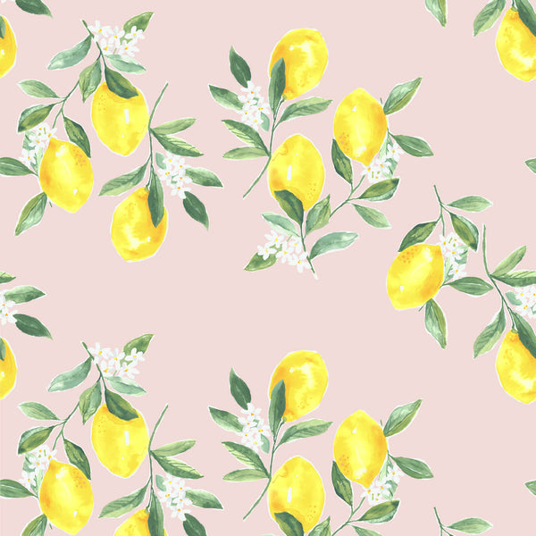 Fresh Squeezed Wallpaper in Blush