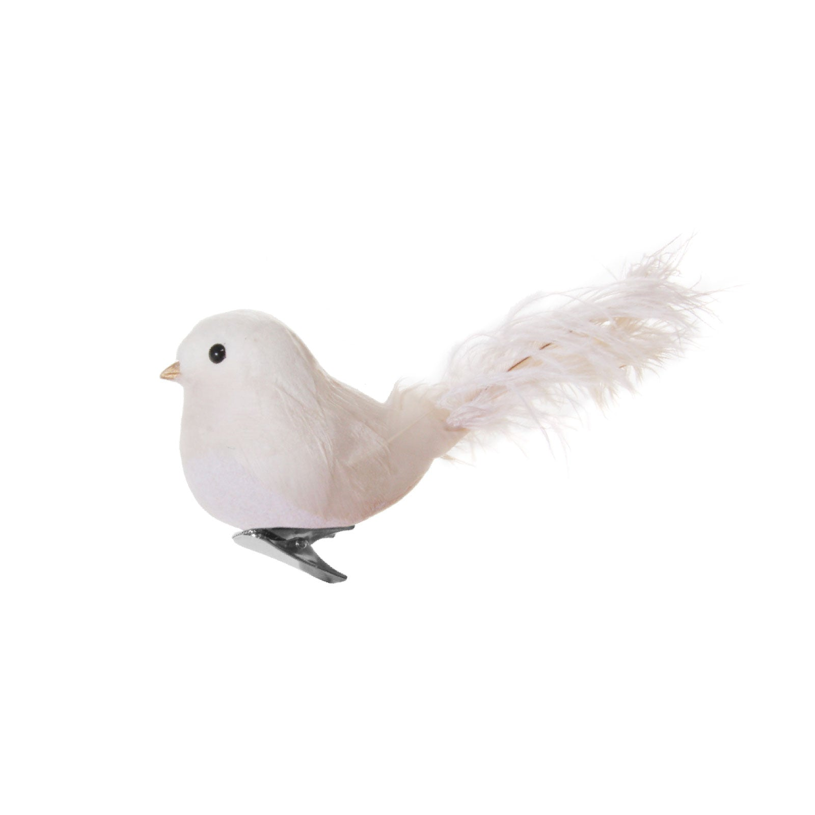 White Bird with Feather Tail