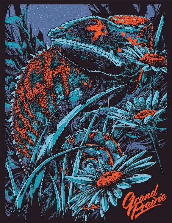 Phish Grand Prairie Concert Poster by Ken Taylor