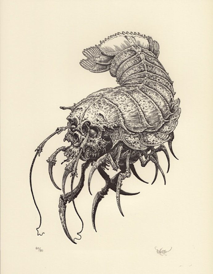"""Skull Isopod"" Art Print by Brandon Holt"
