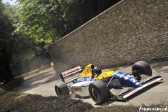 Damon Hill Williams-Renault FW15C