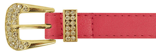 Hot Pink Rhinestone Gold Buckle Belt