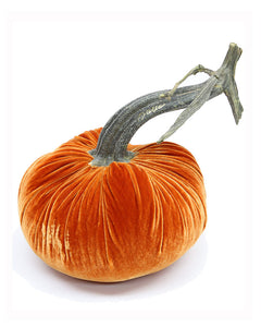 Velvet Pumpkin with Natural Stem