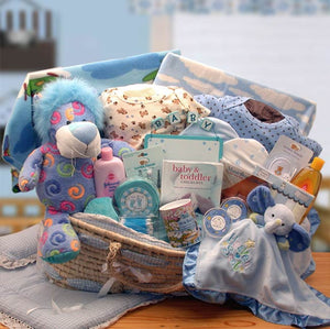 Precious Petals Deluxe Moses Carrier-Blue - I'm a Gift-Basket Case!