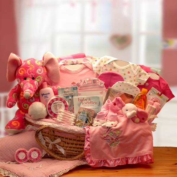 Precious Petals Deluxe Moses Carrier-Pink - I'm a Gift-Basket Case!