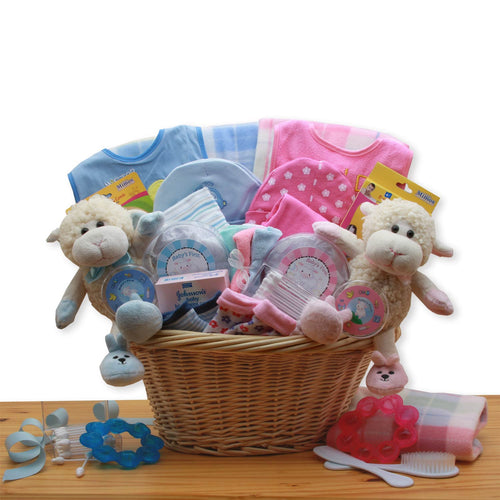 Double Delight Twins New Baby Gift Basket - Pink & Blue