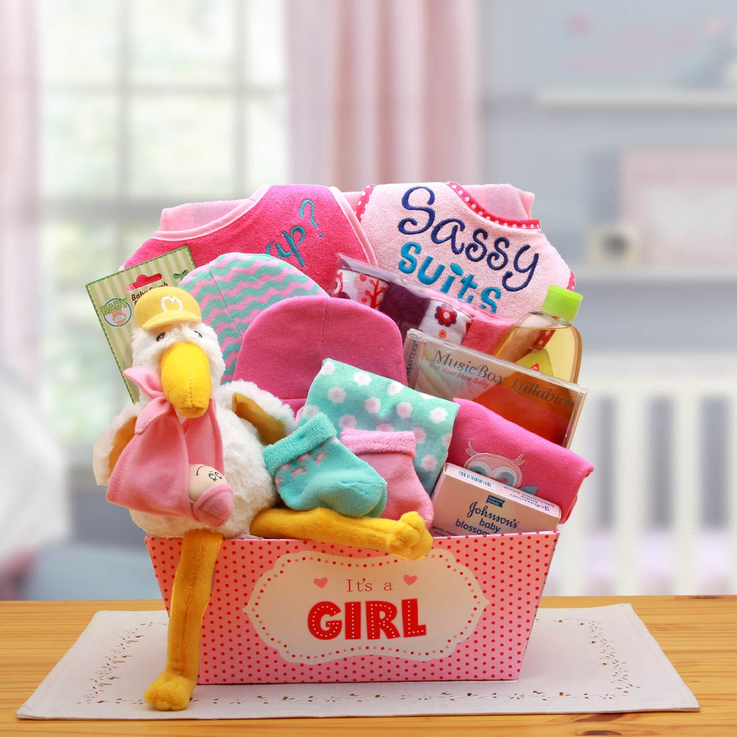 A Special Delivery  New Baby Gift Basket- Pink