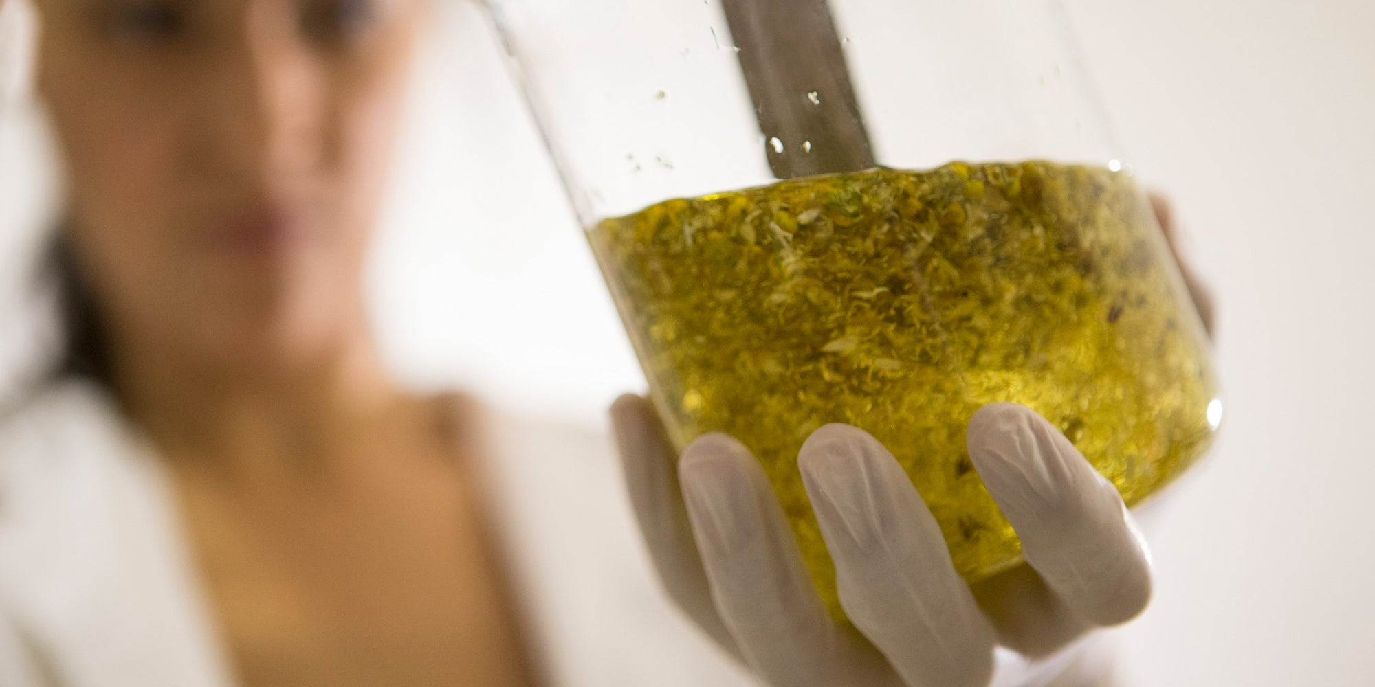 A Guide To CBD Extraction