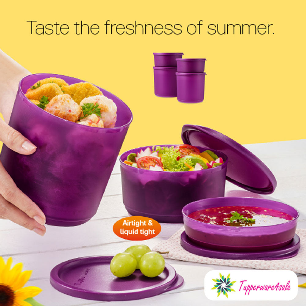 Tupperware Summer Fresh Round Food Containers