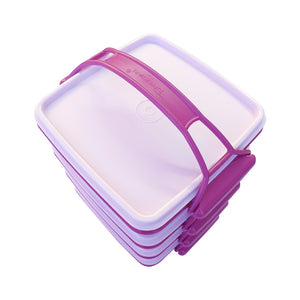 Tupperware Small Goody Box with Carolier - Red