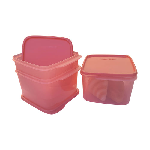 Tupperware Smart Saver Square Containers II