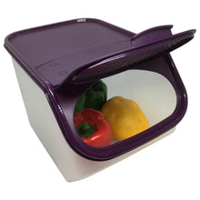 Load image into Gallery viewer, Tupperware Garlic N All Keeper Set 3.0L - Dewberry