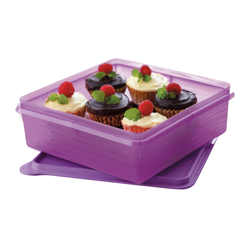 Tupperware B2B Snack Stor