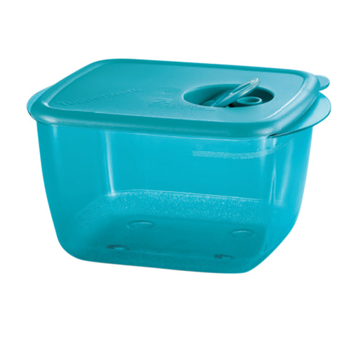 Tupperware Rock N Serve Microwaveable Rectangular Lunch Box
