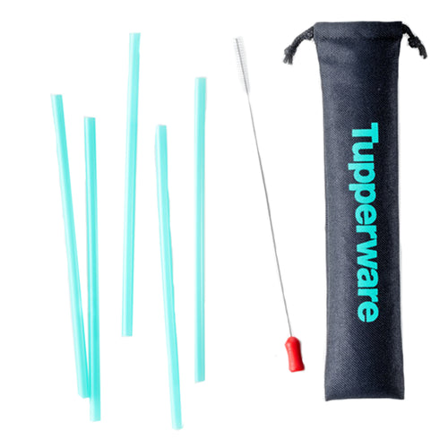 Tupperware Go Eco Straw & Brush Set