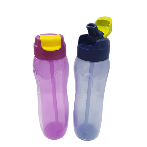 Tupperware Slim Eco Bottle Set With Straw + Brush + Freebies