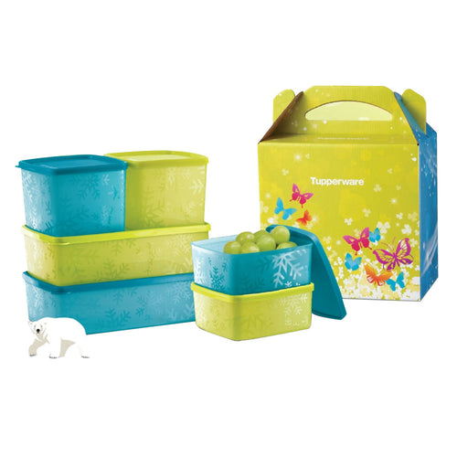 Tupperware Fridge Buddy Set With Freebies