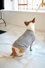 The Logan Knitted Dog Jersey