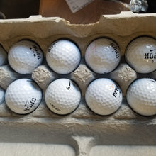 Load image into Gallery viewer, One Dozen Used Nike Mix Golf Balls