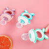 Fruit Nibbler Baby Pacifiers