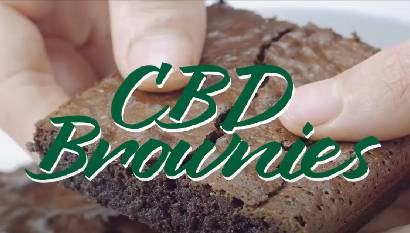 Cooking with CBD | CBD Brownies - Wild Recipes