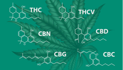 A-Z of Cannabinoids - All you need to Know