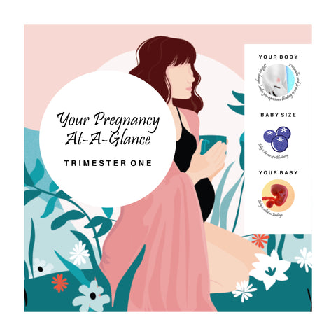 Your Pregnancy At-A-Glance: Trimester One { FREE Download }