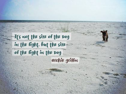 It Is Not the Size of the Dog - Motivational/Inspirational Wallpaper (Downloadable JPEG)