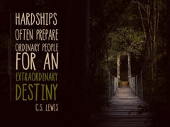 Hardships Often Prepare - Motivational/Inspirational Wallpaper (Downloadable JPEG)