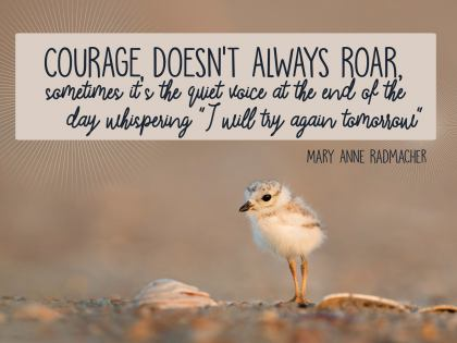 Courage Doesn't Always Roar - Motivational/Inspirational Wallpaper (Downloadable JPEG)