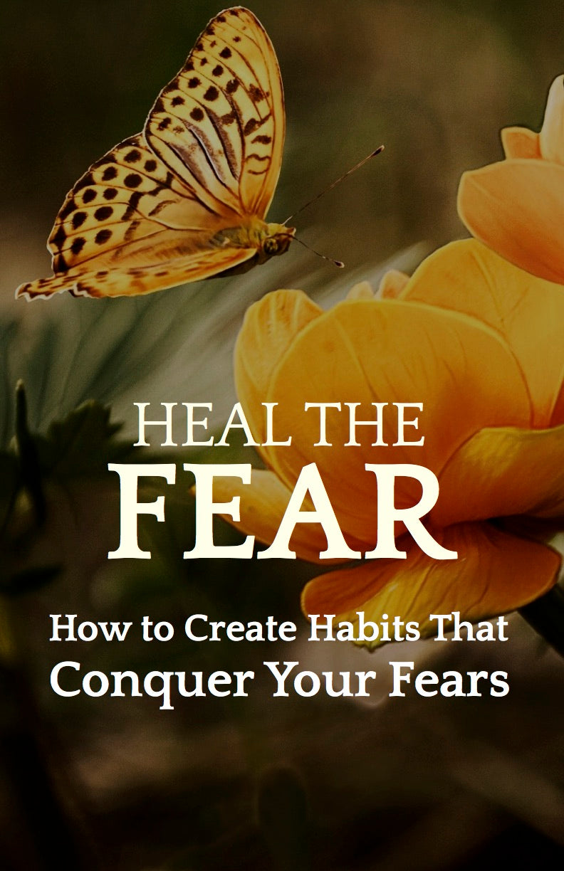 Heal the Fear - How to Create Habits That Defeat Your Fears- eBook – (Downloadable – PDF)